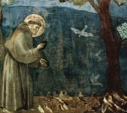 st francis assisi