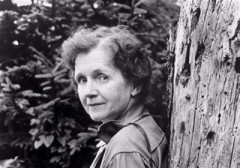 Rachel-Carson-tree-2